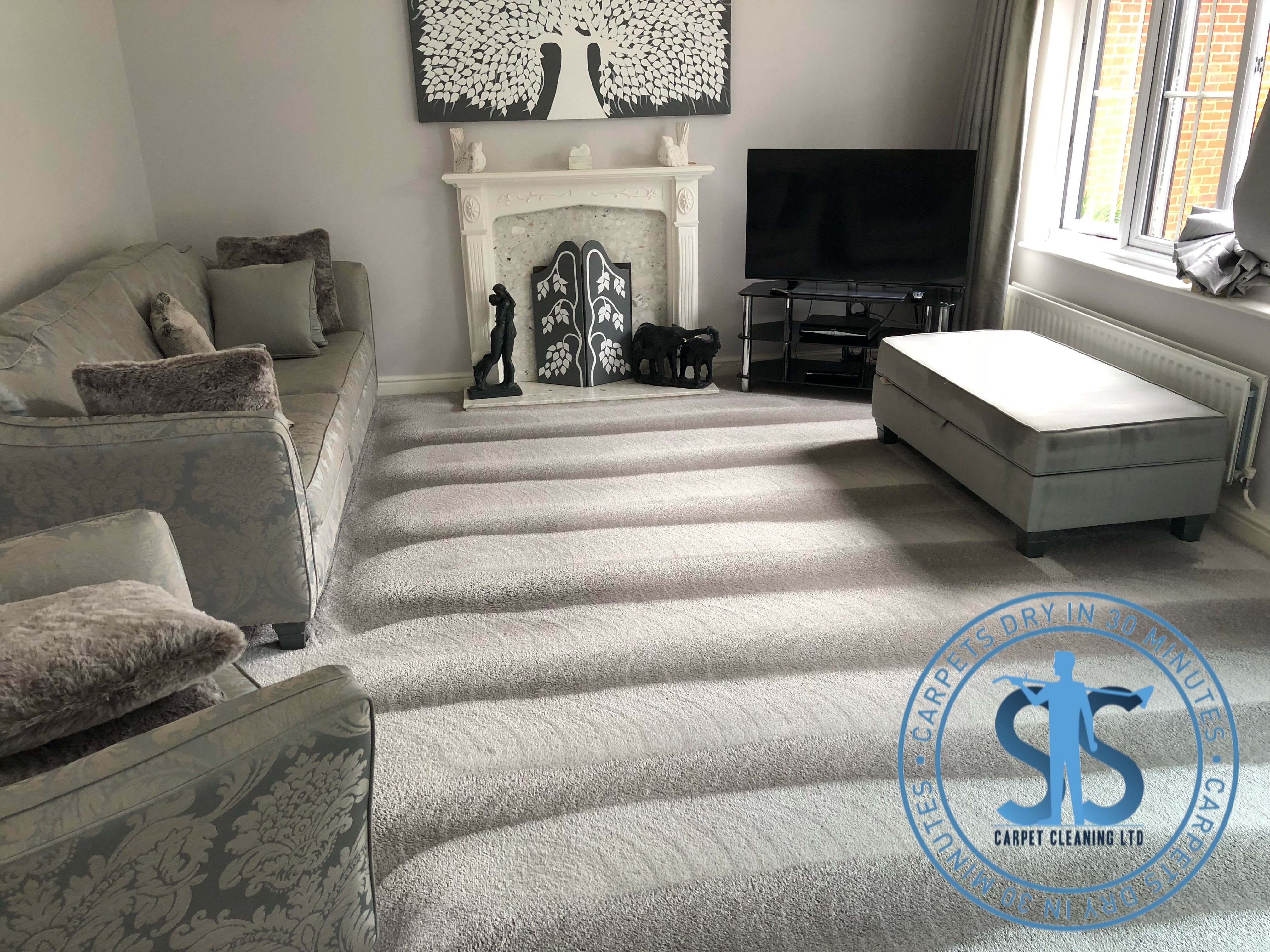 SS Carpet Cleaning